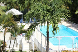 Barbados resort - swimming pool